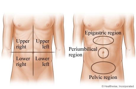 imagini abdomen