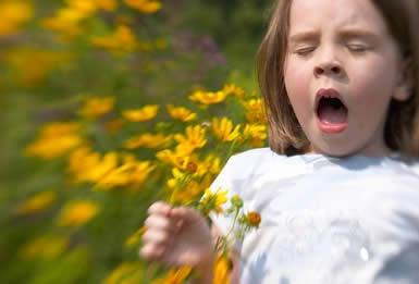 Alergie - medicamente antialergice