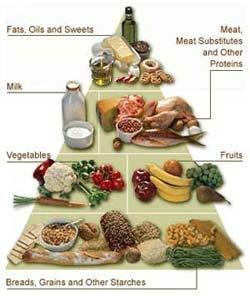imagine cu alimentatie