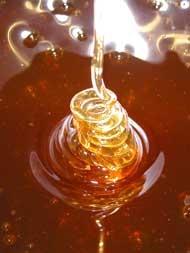 Piersici cu miere
