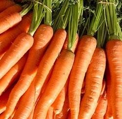 Sos de morcovi cu frisca