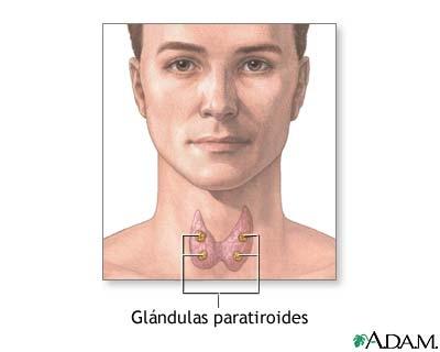poza despre paratiroide