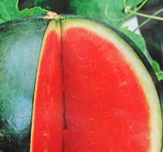 Ingheatata din pepene dulce