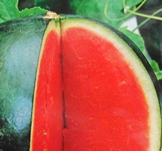 Sos de grapefruit si pepene galben cu castane
