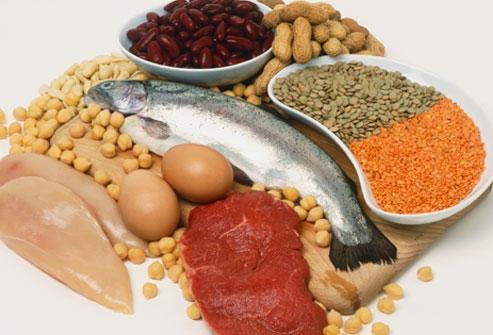 Proteinele in alimentatie