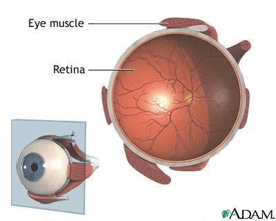 Ce trebuie sa retina bolnavul valvular?