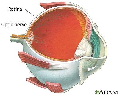 imagini retina