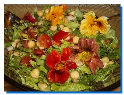 Salata de conopida� si castraveti