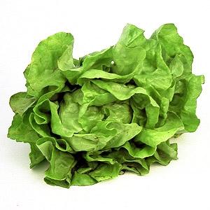 images salata
